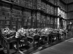 Biblioteca Angelica, Roma 2013ok