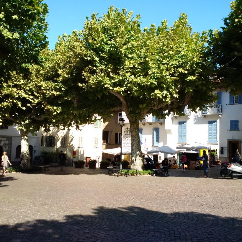albero ospitale in piazza_IMG_20150820_102251