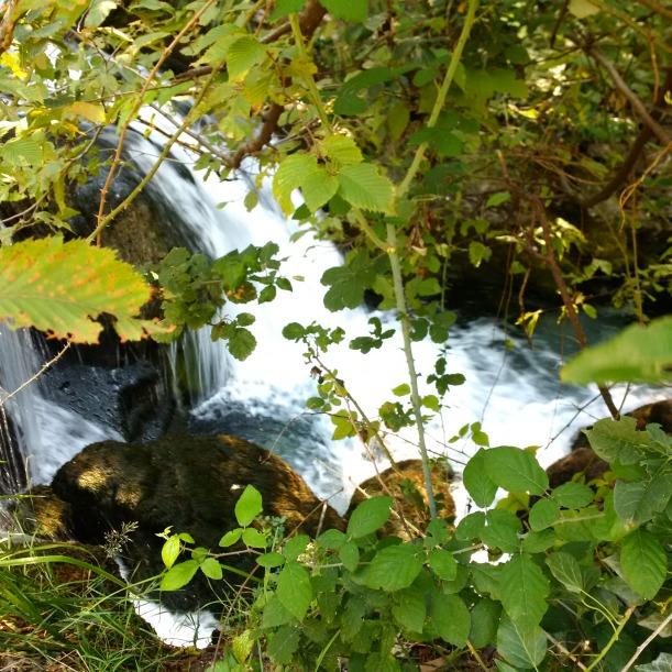 fiumelatte sorgente_IMG_20150820_120514