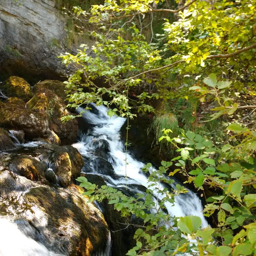 fiumelatte sorgente_IMG_20150820_120519